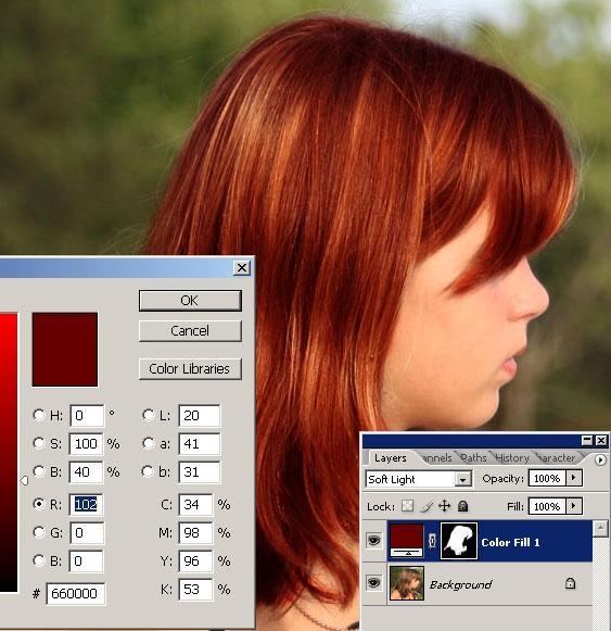праграмма где можно ревлестично менять цвет волос
